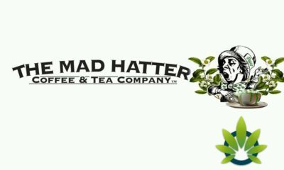 Mad Hatter CBD Coffee And Tea