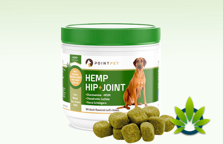 PointPet Hip + Joint Hemp Chews For Dogs