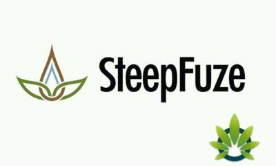 SteepFuze