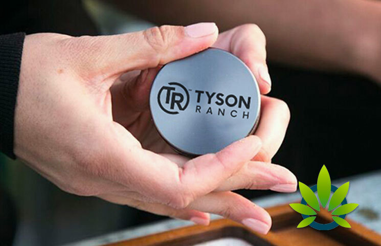 Mike Tyson's Ranch Cannabis Brand Fights Back Against Fake Affiliations