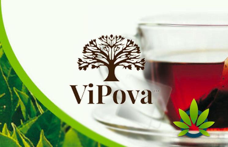 ViPova