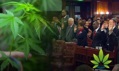 A Dozen Marijuana Proposals Filed By New York City Council Members In Just One Day