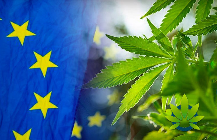 European Food Safety Authority Halts Hemp CBD Category Products With 'Novel Foods' Status