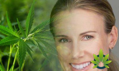 Honest Company Co-Founder's CBD Startup Prima: Hemp Cannabidiol Skincare?