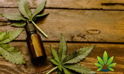 How CBD Product Makers Need To Properly Package And Price Cannabidiol When Selling