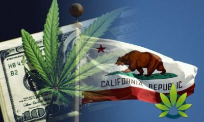 New 'Temporary Cannabis Tax Reduction Bill' Looks To Lower Taxes On California CBD Sales