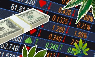 3 Hot Marijuana Stocks to Buy for 2019 – A Guide for Investors