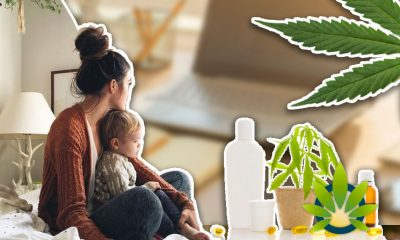 Arizona ABC News Highlights CBD Product Sales a Side Business for Work at Home Moms