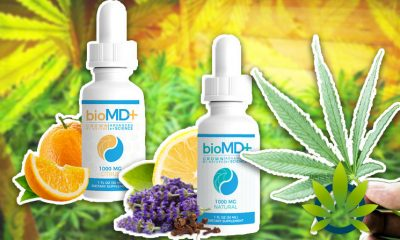 BioMD+ Launches Premium CBD Oil Product Line Enhanced with Natural Plant Terpenes