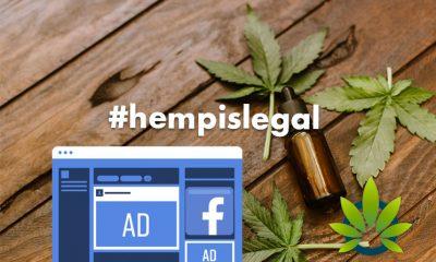 "Bluebird Botanicals Helps Lead New ""Hemp is Legal"" Petition Regarding Facebook Ad Promotion"