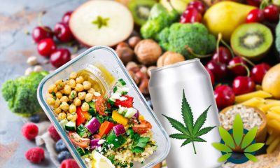 CBD-Infused Beverages Look to Transform the Food and Drink Beverage Industries