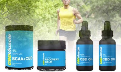 CBDMuscle-Oil-and-Balm-Products-Utilize-Cannabidiol-and-BCAA-Ingredients-for-Muscle-Recovery