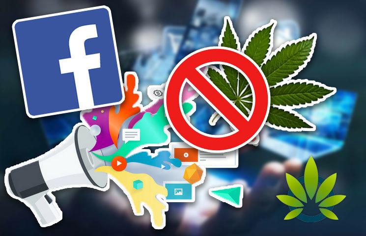 Cannabis Businesses Suing Facebook for Social Media Network's Anti-Marijuana Advertising Policies