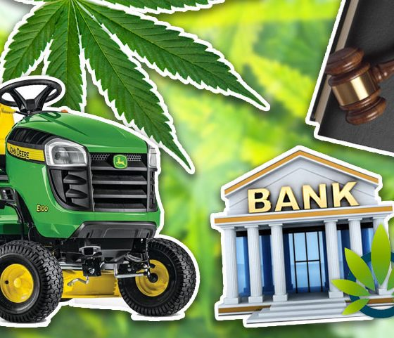 Capitol Discusses Marijuana Legalization Along with Banking, Farming and Medical Justice Bills