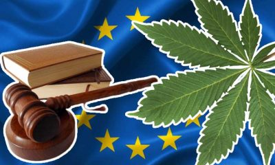 Europe's New Common Agriculture Policy Cannabis Rules for 0.3 THC Levels to Enhance CBD Market
