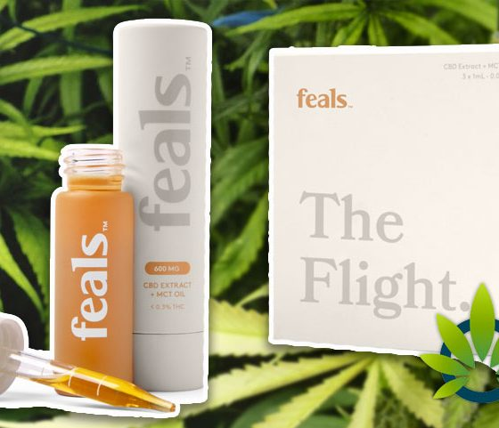 Feals CBD Subscription Service Enables Monthly Cannabidiol Extract with MCT Oil Delivery Option