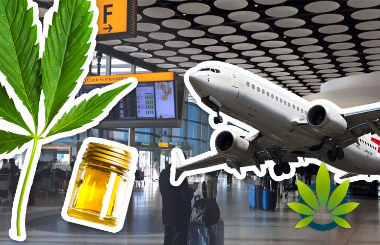 It's Not a Wise Idea to Bring Cannabidiol Products or CBD Oils to an Airport as It Can Cost You Dearly