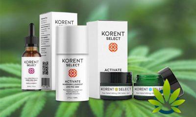 korent select