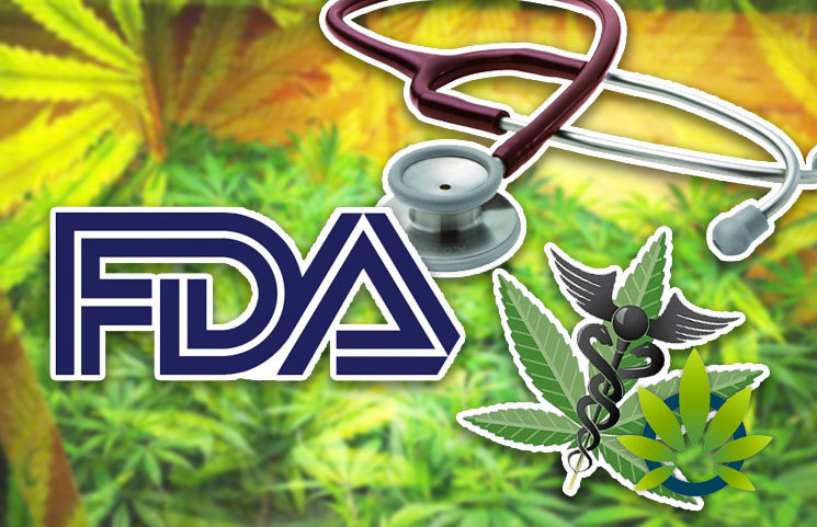 Medical Cannabis Industry Experts' Expectations for the FDA's May 31 CBD Hearing