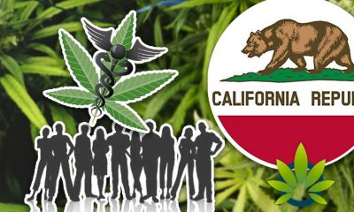 Medical Cannabis Litigation in Kern County, California: Protecting Voters Will