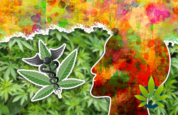 New Alternative and Complementary Medicine Study Reveals CBD Benefits for PTSD Symptoms