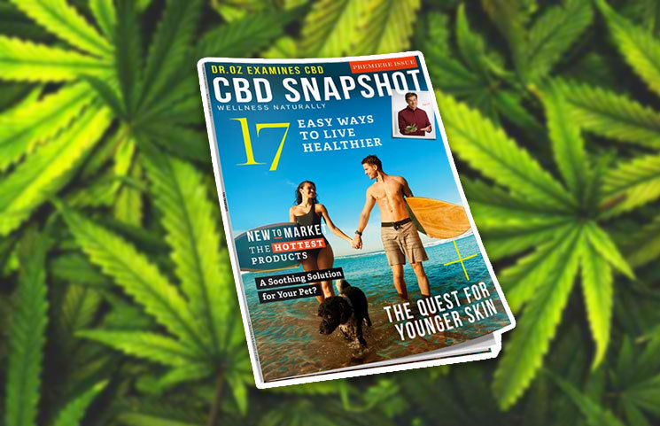 New Cannabidiol-Focused Magazine Comes to Market Called 'CBD Snapshot' for Hemp Oil Products