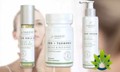 The Birth and Growth of Sagely Naturals, the Biggest Female-Founded CBD Company