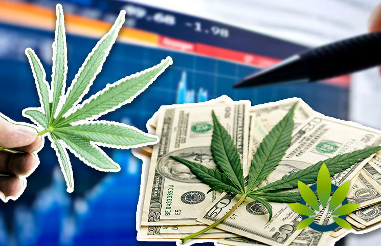 Top Cannabis Stocks to Consider Purchasing for Portfolio Diversify as CBD Sales Soar in 2019
