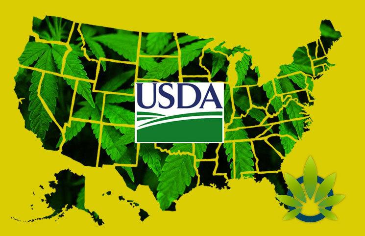 USDA Issues Transportation of Hemp Memo Stating No Shipping Roadblocks Across State Lines