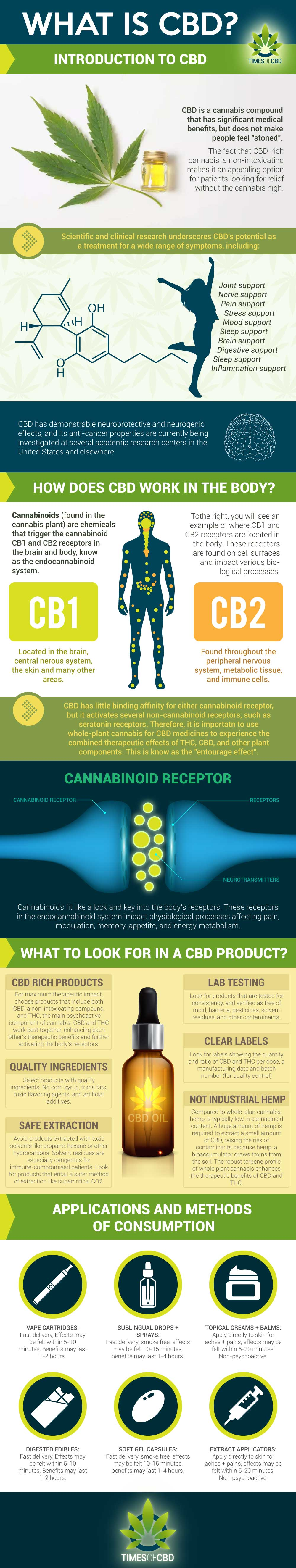 What-is-CBD infographic
