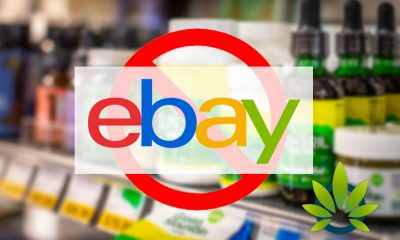eBay To Continue Banning the Sale of CBD Products