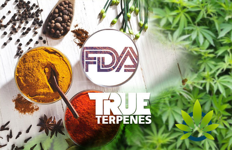 True Terpenes to Share Testimony at FDA Hearing Regarding Terpene and CBD Use in Food Supply