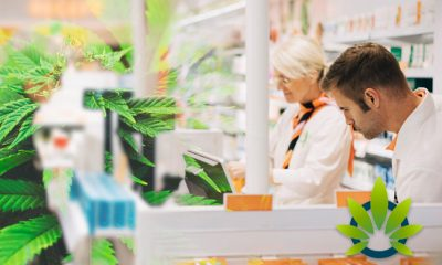 40% of Americans Believe CBD Oil Products Should Be Available Over-the-Counter