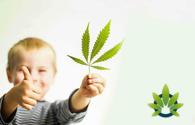 A Hope For The Future: Hemp CBD and Childhood Epilepsy