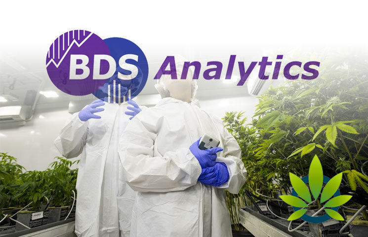 Arcview Market Research, BDS Analytics Anticipate 36% Growth in the Cannabis Market in 2019