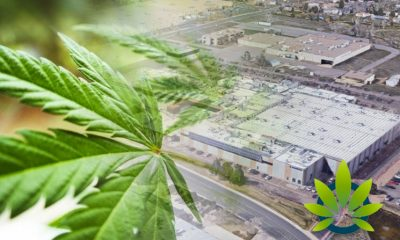 CBD Isolate Producer Mile High Labs Purchases a 400,000 Square Foot Facility in Colorado