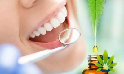 CBD for Oral Health