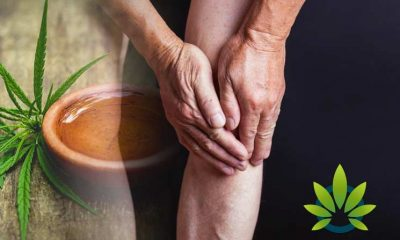 Arthritis Patients Could Benefit From CBD and Medical Cannabis, New CreakyJoints Study Suggests
