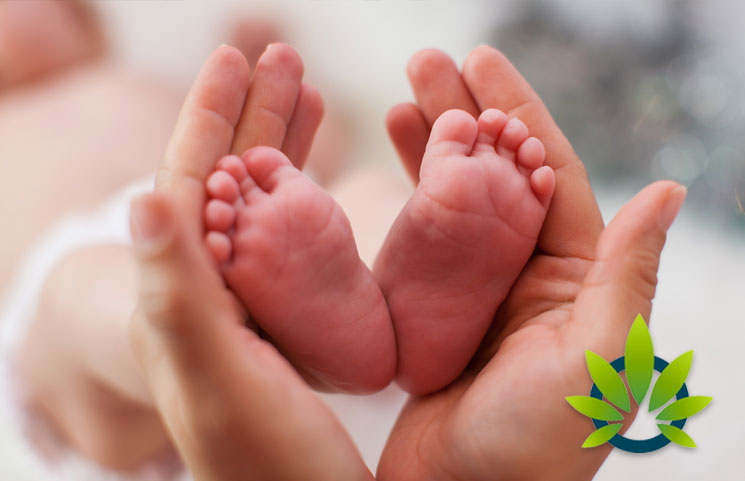 Can Marijuana Affect Fertility? New Canadian Medical Association Journal Cannabis Study Results