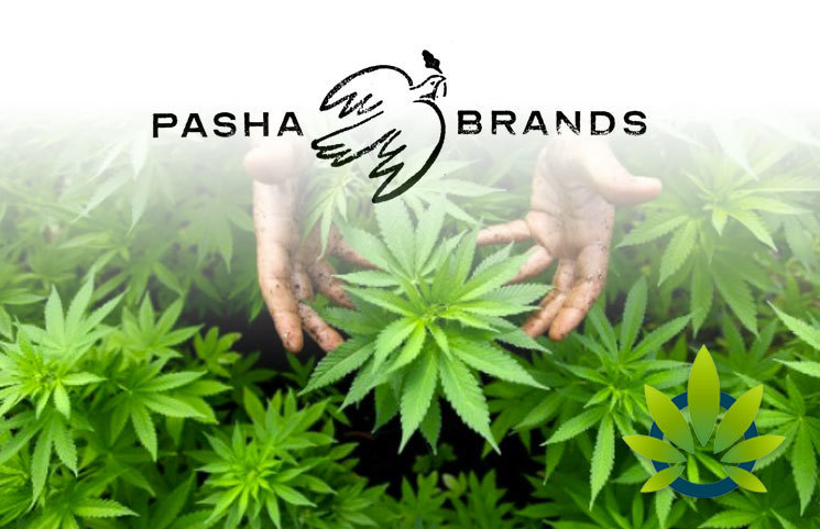 Canada's Pasha Brands Buys CBD Therapeutics, a Leading Cannabidiol Product Purveyor