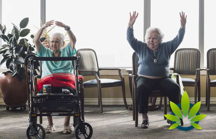 Cannabis Could Work to Benefit the Elderly with Job Retention, Studies Show