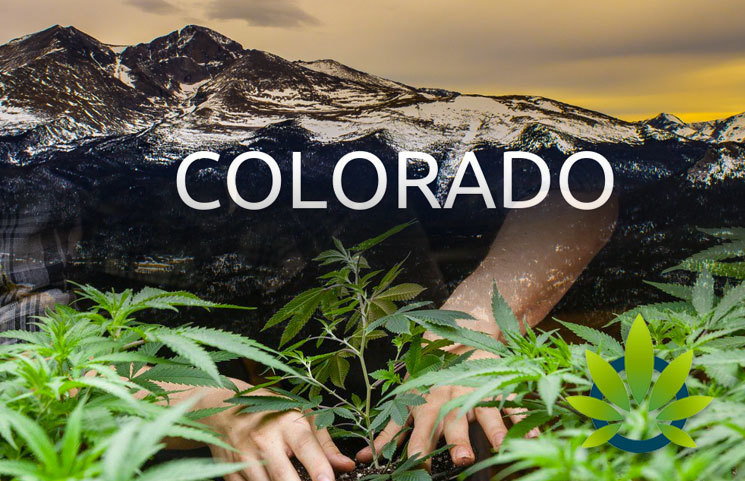 Cannabis Legalization Induces a Positive Effect on Colorado's Economy