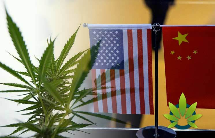 Cannabis was Prohibited in China Nearly 50 Years After It Was in the United States