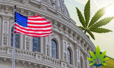 Congressional Marijuana Employment Report Urges Government to Update Hiring and Firing Policies
