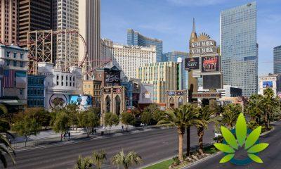 Nevada State Legislature to Delay In Cannabis Lounge Openings In Las Vegas Until 2021