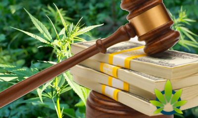 Federal Reserve Executive Provides Clarification to Banks for Hemp Businesses' Financial Services