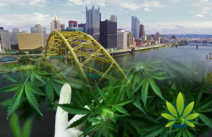 Pittsburg City Council Blocks Hemp Cannabis Businesses for At Least Another Two Years