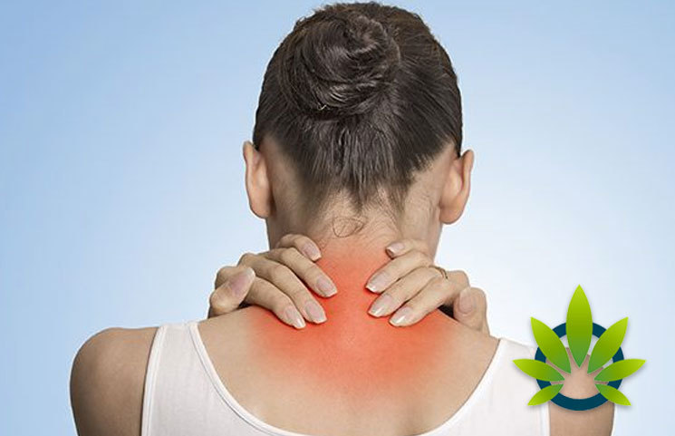 What's the Latest on Hemp CBD Offering Effective Relief to Fibromyalgia Sufferers