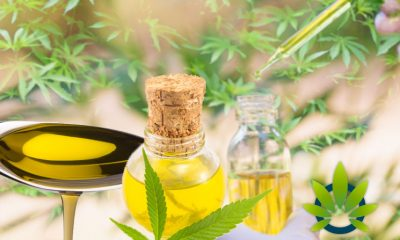 Hemp-Derived CBD Oil To Be Legalized in Louisiana? Here's the Latest