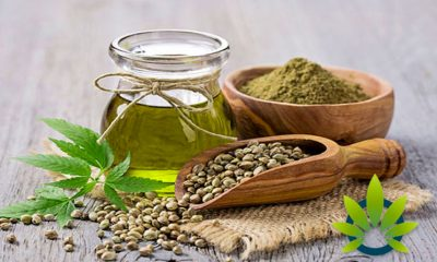 Hemp and CBD (Cannabidiol) Ingredient Markets: The Biggest Concerns and Challenges
